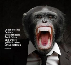 Unbeherrschte Gefühle und unstillbare Bedürfnisse sind unsere gefährlichsten Schwachstellen.
