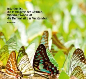 Intuition ist die Intelligenz der Gefühle, Wahrheitswahn ist die Dummheit des Verstandes.